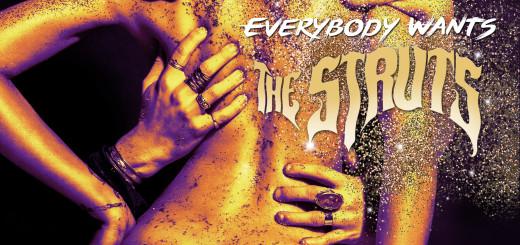 the_struts_cover